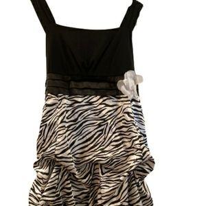 Vintage Amy's Closet Zebra Dress